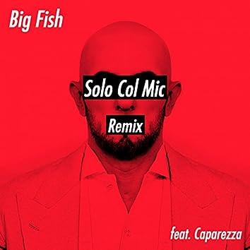 Solo Col Mic (feat. Caparezza) [Remix]
