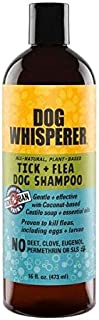 YAYA Organics Dog Whisperer Tick + Flea Dog Shampoo, Proven Effective, All-Natural, Gentle with Coconut-Based Castile Soap and Essential Oils (16 Ounces)