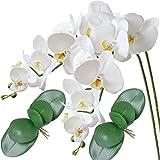 FagusHome 2 Piezas Flores Artificiales Orquídea Phalaenopsis Mariposa 100cm con 2 Piezas Hojas de Orquídea Phalaenopsis Hojas (C)