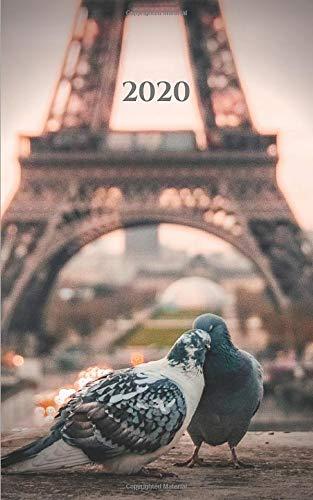 Paris Pigeons - 2020 Daily Hourly Planner: 5'x8' Small Engagement Calendar (Beautiful Calendar Books for 2020)