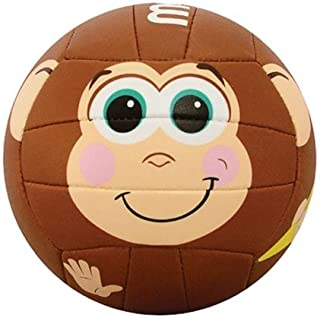 monkey volleyball