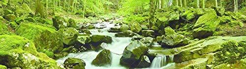 Papermoon Waterstream Panorama Vlies Fototapete 350x100cm.
