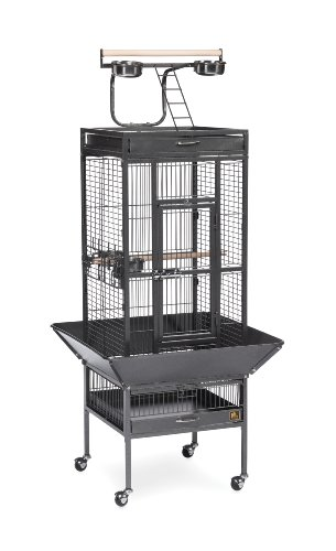 Prevue Pet Products Wrought Iron Select Bird Cage Black Hammertone 3151BLK, 18'' x 18'' x 57''