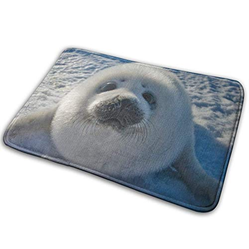 NA Welkom Deurmat - Schattig babyzegel antislip ingang vloertapijt voor binnen buiten voordeur mat - Machine wasbare tapijt deurmatten