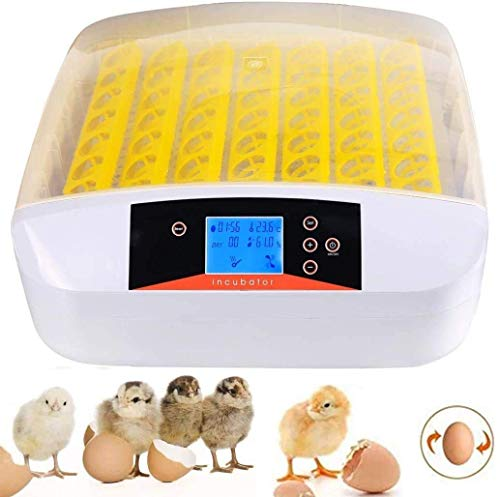 56 Eggs Incubator with Automatic Turner for Hatching Eggs,Bird Poultry Chick Hatcher,Small Egg Hatcher Machine LED Display