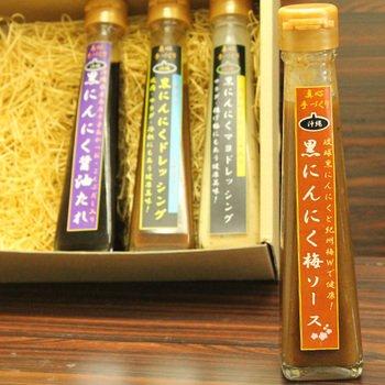 黒にんにく梅ソース 120ml×2本 テクノグリーン 和歌山県産の梅干し使用!薫り高い万能ソースで豚肉料理やサラダのドレッシングにも。