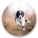 Impresionantes pegatinas de vinilo (juego de 2) 30 cm – Happy Border Collie Puppy Dog Divertidas calcomanías para portátiles, tabletas, equipaje, reserva de chatarras, neveras, regalo genial #45286