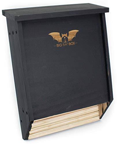Big Bat Box 2-Chamber Cedar Bat House (black)