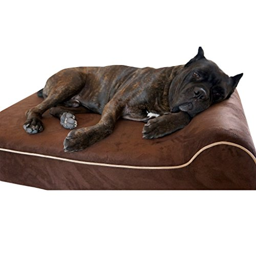 Bully beds Orthopedic Memory Foam Dog Bed - Waterproof Bolster Beds for Large and Extra Large Dogs - Durable Pet Bed for Big Dogs (Medium, Chocolate)