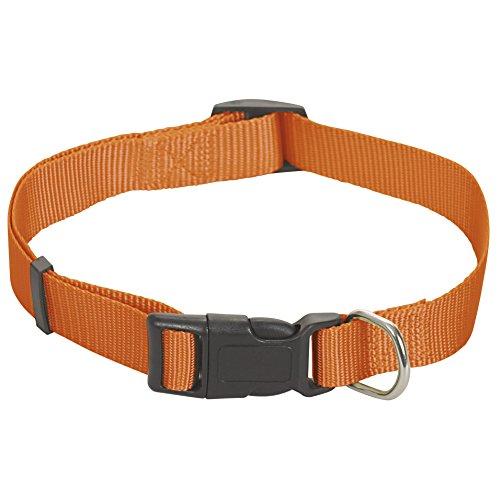 CHAPUIS SELLERIE Collier pour Chien Sangle Réglable Nylon Orange 15 mm 35-50 cm, Taille S