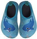 BomKinta Kids Water Shoes Boys Girls Quick Dry Non-Slip Aqua Socks for Beach Swimming Pool SkyBlue Size 8-8.5 M US Toddler