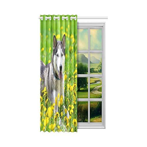 XiexHOME Günstige Verdunkelungsvorhänge Hund und gelbe Frühlingsblumen Fenster Vorhanghalter 52x63 Zoll (132x160cm) 1 Panel Verdunkelungsvorhang Vorhang für Schlafzimmer Wohnzimmer