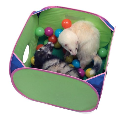【ALLFORWAN'sLIFE】マーシャルペット フェレットプレイハウス ポップンプレイボールピット Pop-N-Play Ball Pit for Ferrets