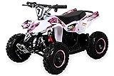 Miniquad Infantil ATV FOX XTR ELECTRO 1000 Vatios Pocket Quad Kinderquad Vehiculo infantil...