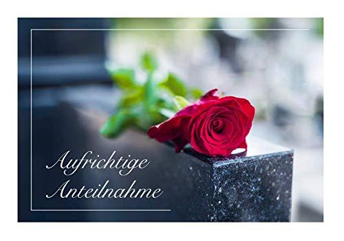 Merz Designkarten 6 Stück einfühlsame Premium-Trauerkarten/Beileidskarten im Set mit 6 weißen Umschlägen - aufrichtige Anteilnahme Mitgefühl Beileid Trauerkarte mit Text, Spruch Todesfall