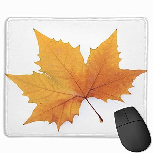 Muismat, bureau, muismat, laptop muismat, herfst-muismat, platte boom, blik, alleen symbolisch
