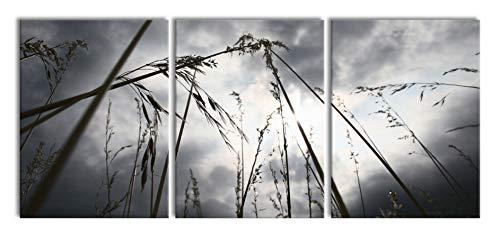 Sombere gras van de regenXXL canvasbeeld 3 deel | 180x80cm volledige maatregel | Wanddecoraties | Kunstdruk