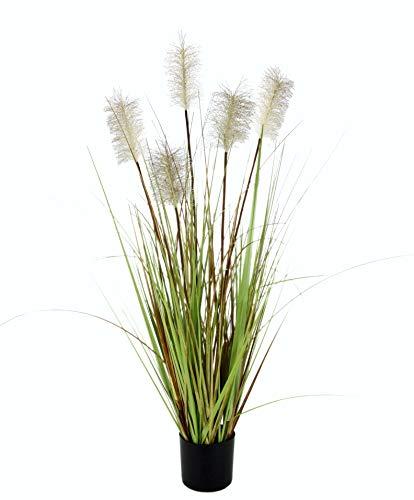 Flair Flower Pampasgras im Topf, Plastik, natur, 90 x 28 x 28 cm
