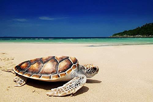 DKISEE Rompecabezas clásico de tortuga de mar en la playa, 1000 piezas, para adultos, niños, ancianos, ideal como regalo para festivales, decoración del hogar, 75 x 50 cm