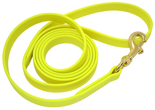 J&J Dog Supplies Biothane Dog Leash, 3/4' Wide by 6' Long, Lime Green