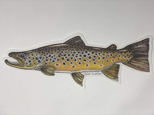 Trout & Fish Stickers - Fly Fishing Decals Designed by Artist Jeff Currier   Trout   Bass   Carp   Striper   Fishing Gift   Add Some Fish Art to Your World (12 Inch Brown Trout Decal)