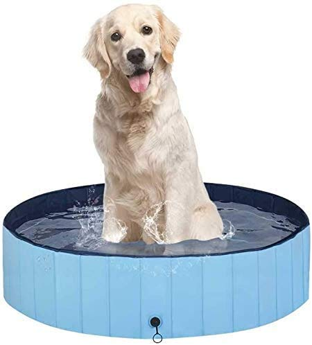 COOLGUY Paddling Pool for Dog,Sturdy Foldable Dog Pool,Dog Pet Pool Bathing Tub Kiddie Pool for Dogs Cats and Kids for Garden Patio Bathroom (Blue 80 * 20cm)