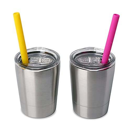 Housavvy 2 Pack 8.5oz Kids Stainless Steel Cups with Lids and Straws Double Wall Insulated Toddler Cups, Dishwasher Safe, Kids Tumbler for Boys and Girls, BPA Free Childrens Smoothie Drinking Cup