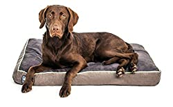 First-Quality-Thick-Orthopedic-Dog-Bed