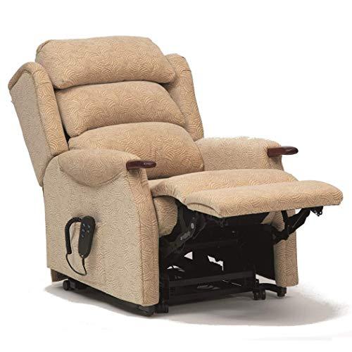 Wheelchair Rollstuhl, medizinischer Reha-Stuhl für Senioren, alte Menschen, einmotoriger Knöchelarm-Riser-Liegestuhl - Korrosionsschutzfedern - Reflex-Sitzschaum - gefederter Fußlehnen-Liegesessel (P