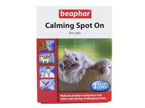 Beaphar Spot on, beruhigt Katzen, 4Stück