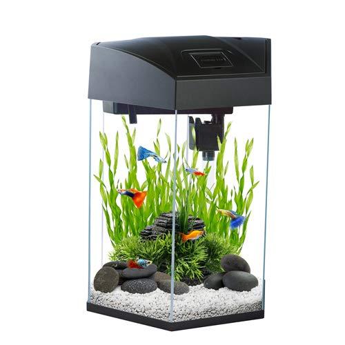 Nano-Komplett-Aquarium 20L,kratzfestes Glas,Filter/Pumpe u. LED-Beleuchtung in der Abdeckung