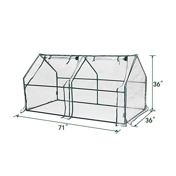 "Tooca 71"" x35"" x35"" portable greenhouse for indoor outdoor gardens/patios/backyards, suitable young plants (not included garden bed) 3 【perfect plant protection】clear pvc cover can stop plant seeds or young plants from frost, and keep internal moisture. It's ideal for maintaining seeds' breeding and plants' growing, helping extend the growing season for all year around. 【2 roll-up zippered doors】the mini greenhouse has two doors, which makes it easy and convenient for watering and ventilation. 【steady & reliable】iron frame with spray paint rust prevention treatment is sturdy and durable."