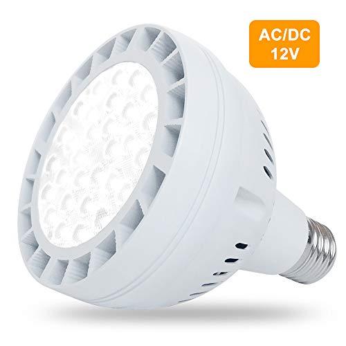 12V 50W LED Pool Light for Ingro...