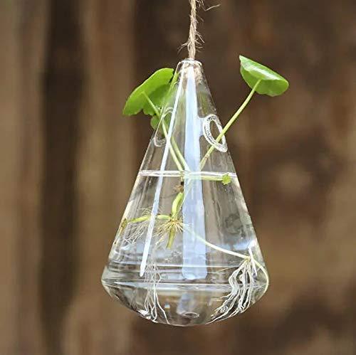 HO-TBO Plante terrarium en verre hydroponique en forme de goutte d'eau pour décoration de jardin, transparent, taille unique