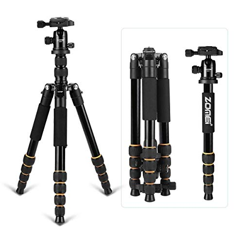 "Q666 Tripod for Camera and Camcorder,Magnesium Aluminum Alloy Light Weight Portable Camera Tri-pod Travel Folding Size with Ball Head Carrying Case for Canon Nikon Sony DSLR Cameras 14.5""-61"""