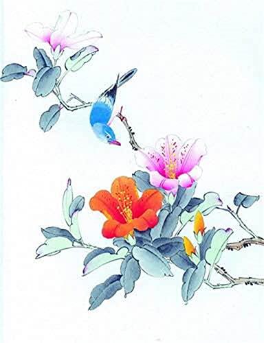 Heyao DIY Pintura al óleo de por Números Kit Flores y pájaros para Adultos Niños Pintura al Óleo De Lona Preimpresos para la Decoración De...