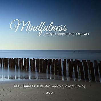Mindfulness: øvelser i oppmerksomt nærvær