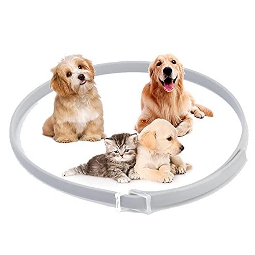 NZQLJT Cuello de pulgas para Perros, Collares de Control de plagas repelentes Longitud Ajustable 25', Cuello Efectivo Anti pulgas y Tick 8 Meses Protección para pequeñas Mascotas Medianas Grandes