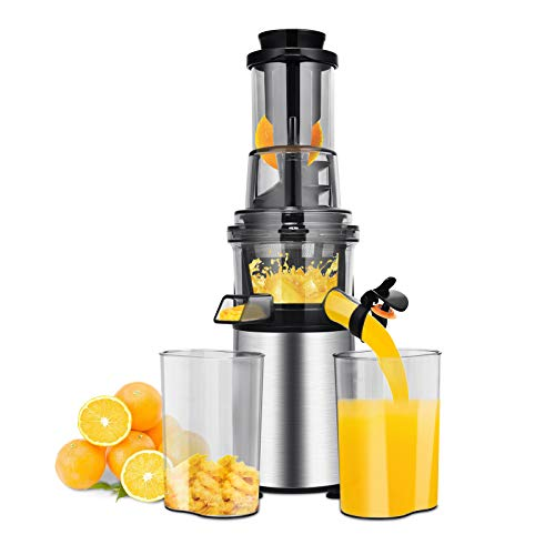 ARLIME Slow Masticating Juicer Cold Press Juicer Extractor with Quiet Motor & Reverse Function, Easy to Clean, High Nutrition Reserve & Juice Yield, Juice Machines with Juice Cup & Brush