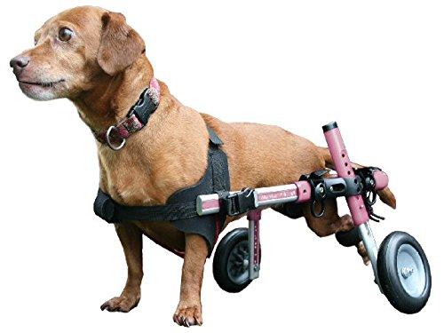 小型犬用の車椅子(ミニチュア・ダックスフンド、トイプードル、シーズー、etc) 色:ピンク
