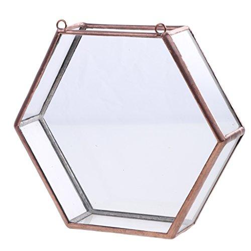 Glas geometrische Terrarium Box Sukkulent Pflanze Pflanzer Wand Dekor - Kupfer