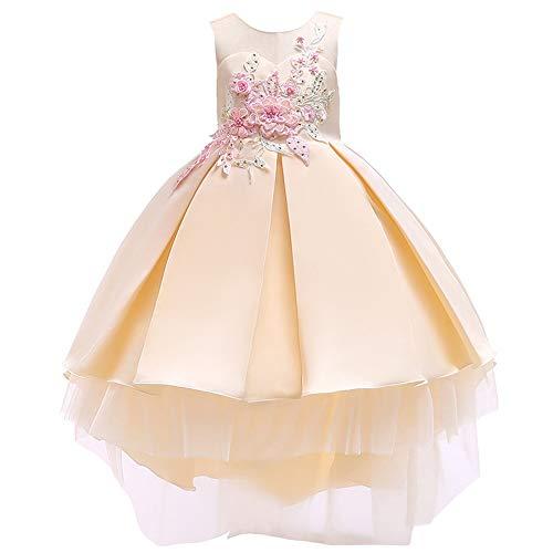 Xiao Jian- Meisjes Jurk Rok Meisjes Jurk Plissé Rok Meisjes Prinses Jurk/Blauw, Roze, Geel dansen unifom