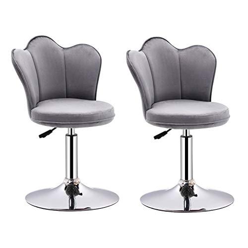CHY draaibare barkruk, 2 stuks, verstelbare stoelen, met rugleuning van de stoel, voor de keuken thuis en de kruk.