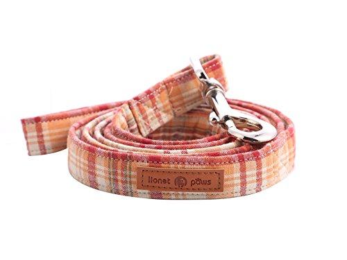 lionet paws Hundeleine Baumwolle Hund Leine für kleine mittelgroße große Hunde, 135cm