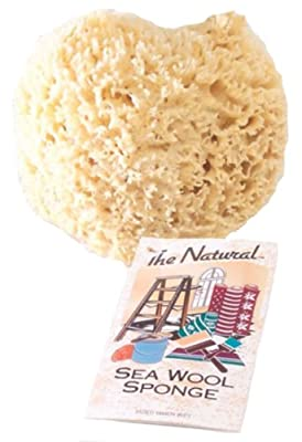 The Natural Sea Sponge, 6 to 7-Inch, Wool