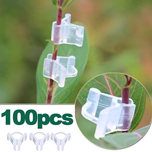 Calayu 100 Stück Pflanzen Pfropfklammern, Pflanzklammern Pflanzenbefestigungsklammern Garten Veredelungsklammern für Gemüse, Tomaten, Blumen