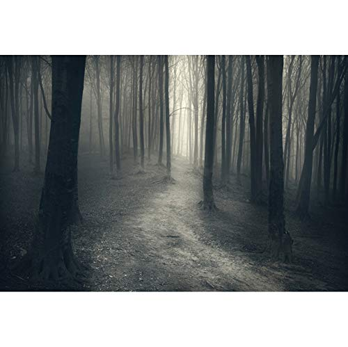 YongFoto 10x7ft Horror Forest Background Misty Bare Trees Photography Backdrop Gloomy Wood Ghost Scary Halloween Party Decoration Photo Booth Digital Studio Props Wallpaper