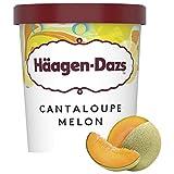 Häagen-Dazs Melon Tarrina, 460ml