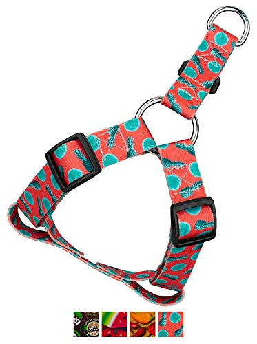 Country Brook Petz | Tropical Tango Step-in Dog Harness - Small