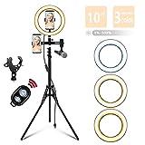 LED Selfie Ringlicht mit Stativ und 2 Telefonhalter Plus Mikrofonklammer, Hotshoe Adapter Bluetooth Empfänger für TikTok/YouTube/Makeup/Vlog/live Stream Self-Porträt der(10 Zoll)